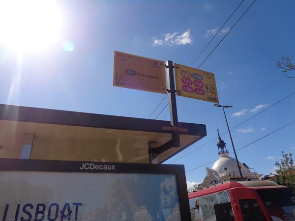 DSC01008-min.JPG