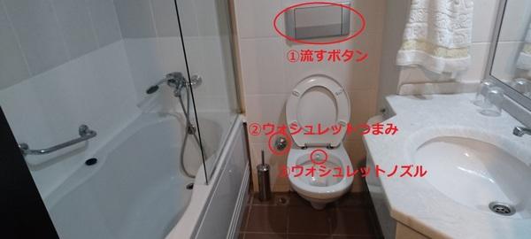 turkey toilet.jpg
